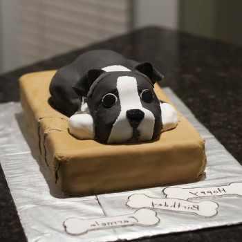 Boston Terrier Party Supplies