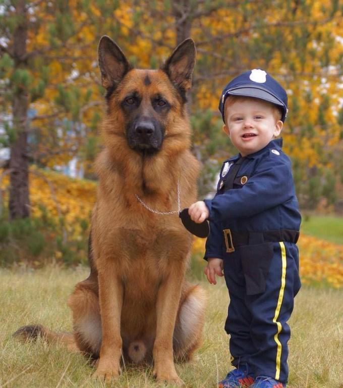 Boy German Shepherd