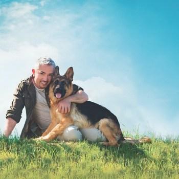 Cesar Millan German Shepherd Book