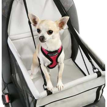 Chihuahua Car Seat