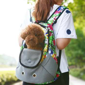 Chihuahua Carrier Backpack