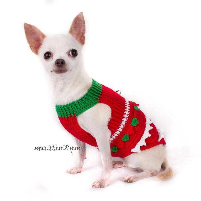 Chihuahua Dog Sweater