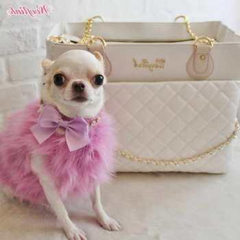 Chihuahua Fashion