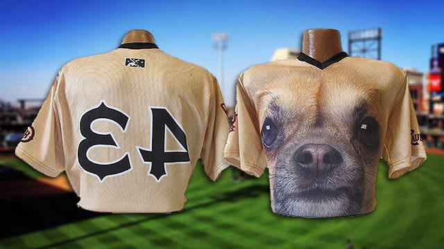 Chihuahua Jerseys