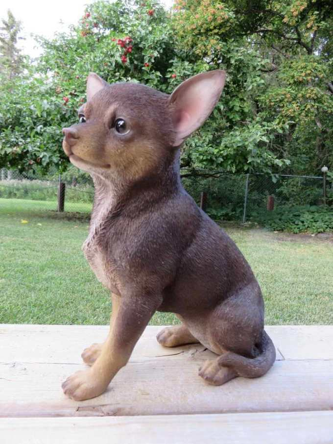 Chihuahua Outdoor Statues