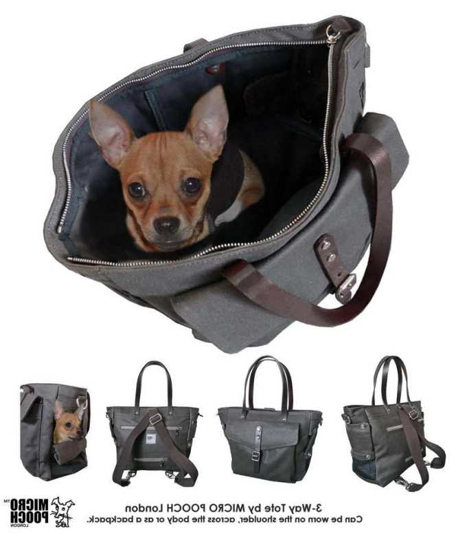 Chihuahua Purse Carriers