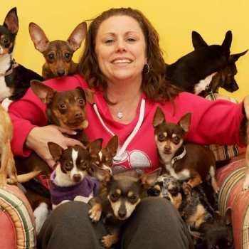Chihuahua Rescue Ny