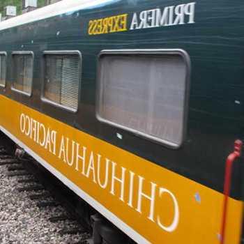 Chihuahua Train