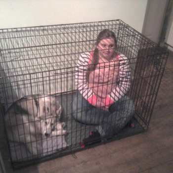 Crate Size For Husky