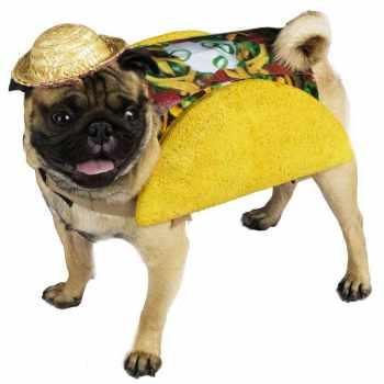 Dog Pug Costume