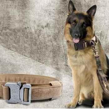 German Shepherd Dog Supplies