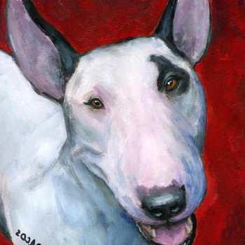 English Bull Terrier Artist