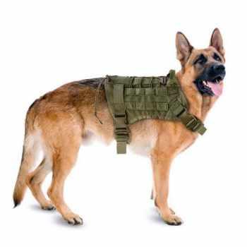 German Shepherd Military Harness