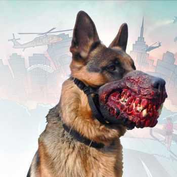 German Shepherd Muzzles For Sale