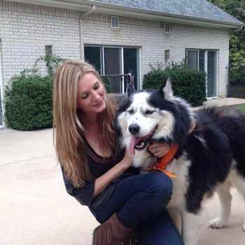 Husky Dog Adoption