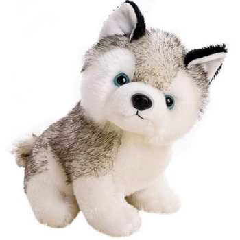 Husky Stuffed