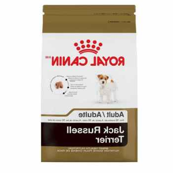 Jack Russell Dog Food