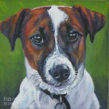 Jack Russell Terrier Paintings