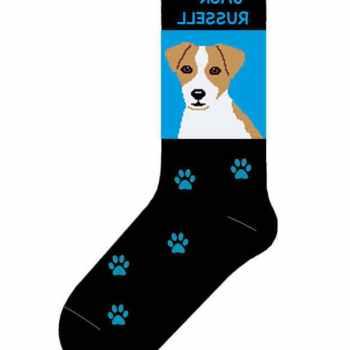 Jack Russell Terrier Socks