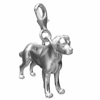 Labrador Charms