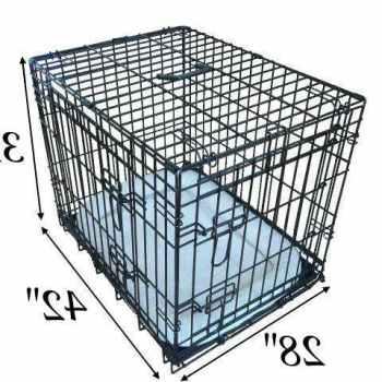 Labrador Crate Size