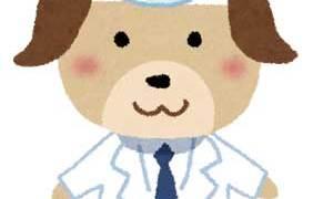 犬猫ペットを飼ったらペット保険へ