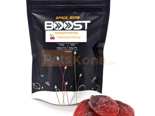 Boost Concentrates | Space Bomb Gummies | Celestial Cherry