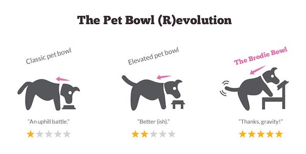 Improve Your Pet's Comfort & Digestion With The Brodie