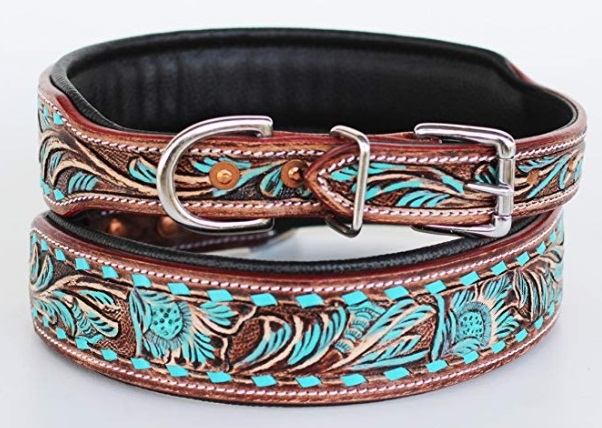 ProRider Dog Collar, Brown and Teal