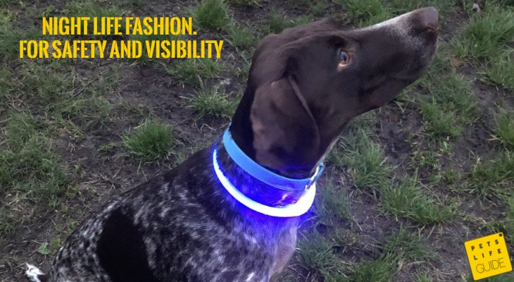 LED Collars for GSP