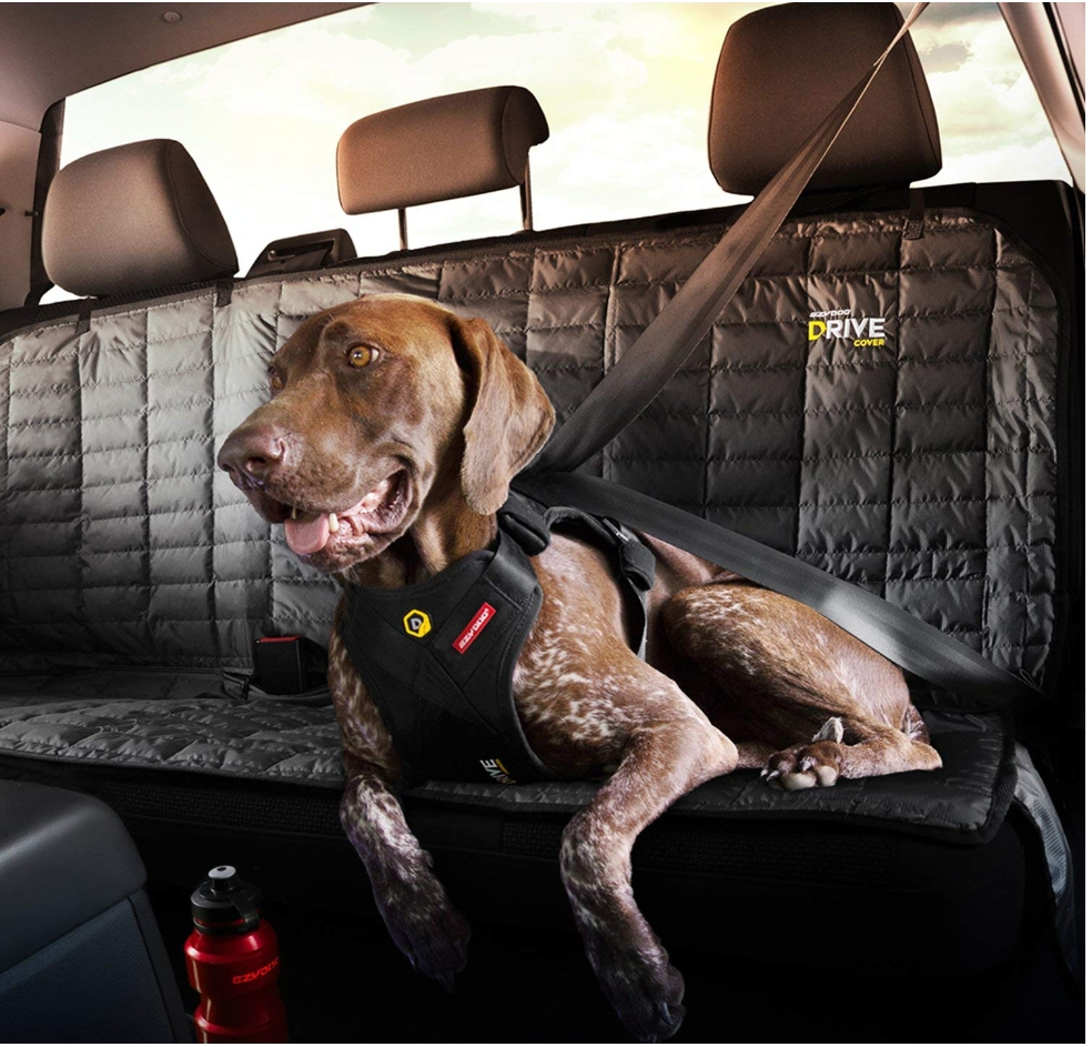EzyDog Drive Safety Travel Dog Car Harness review