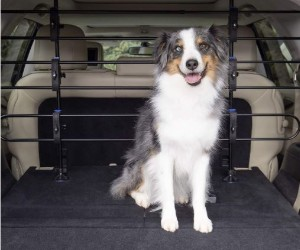 PetSafe Happy Ride Metal Dog Barrier