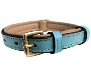 Soft Touch Collars Luxury Leather Dog Collar
