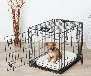 AmazonBasics Single-Door & Double-Door Folding Metal Dog or Pet Crate Kennel with Tray review