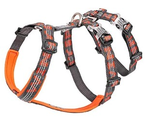 Chai's Choice Best Double H Trail Runner No-Pull Dog Harness