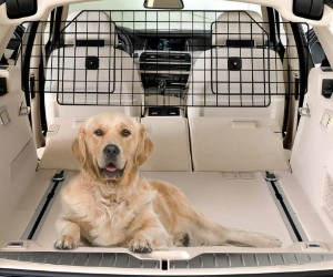 rabbitgoo Dog Car Barrier review