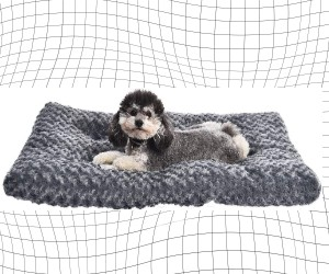 AmazonBasics Plush Dog Pet Bed review