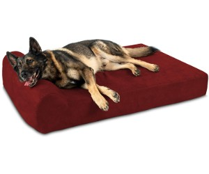 Big Barker Dog Bed, Headrest Edition review