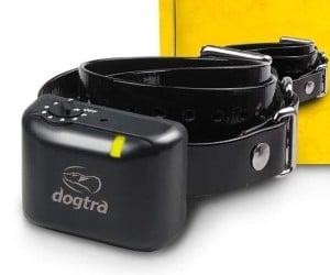 Dogtra YS300 Compact No Bark Collar review