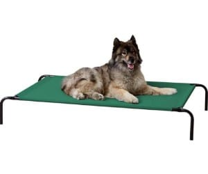 Amazon Basics Cooling Elevated Pet Bed review