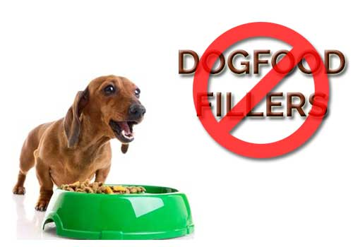 no-to-dog-food-fillers