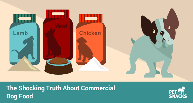 preview-full-the-shocking-truth-about-commercial-dog-food