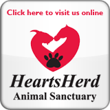 heartsherdlogo_button