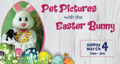 pet pictures with the easter bunny 2018