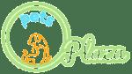 Parakeets - Pets Plaza