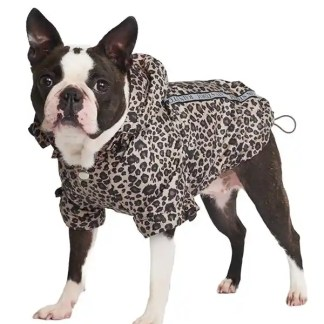 leopard print raincoat for dogs