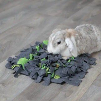 sniffing carpet for small animals