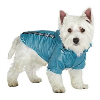 urban pup raincoat