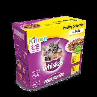 whiskas kitten