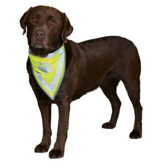 hi vis bandana for dogs